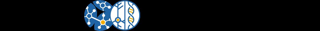 クラスタ/ハブダイナミズムの決定剛軟因子